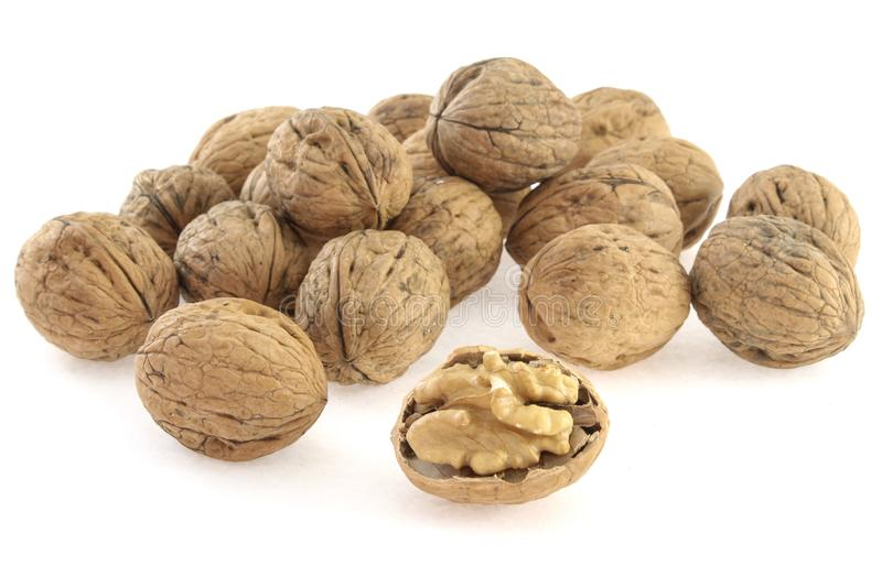 Walnuts in shell on white background stock photography