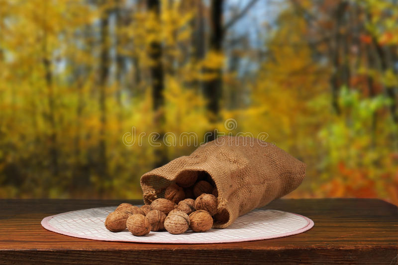 Walnuts on Table