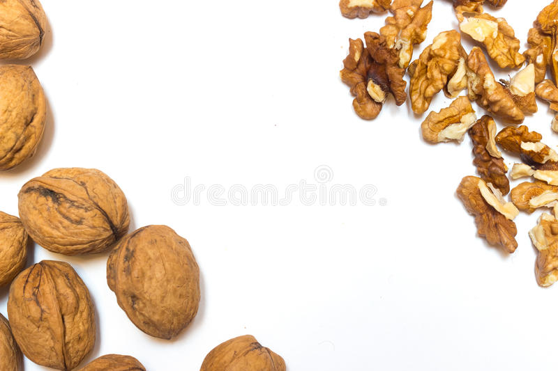 Walnuts on a white background royalty free stock photography