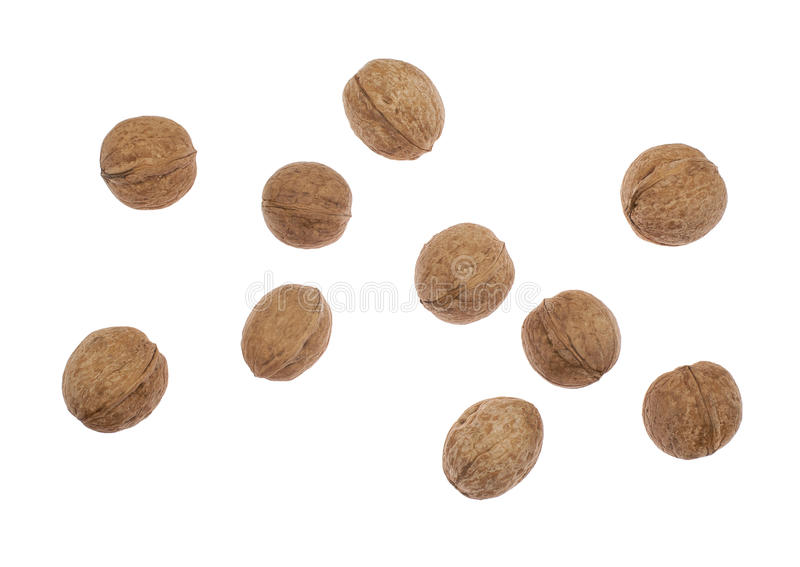 Walnuts on white background stock image