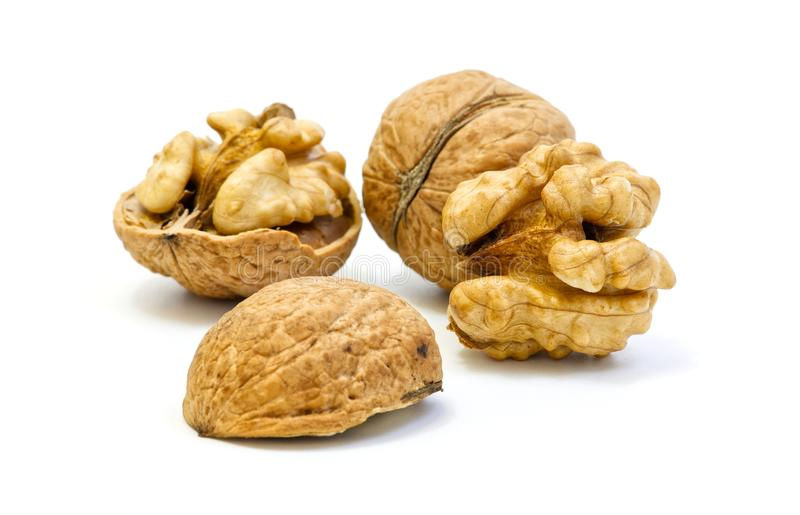 Walnuts, whole and opened on white background stock photos