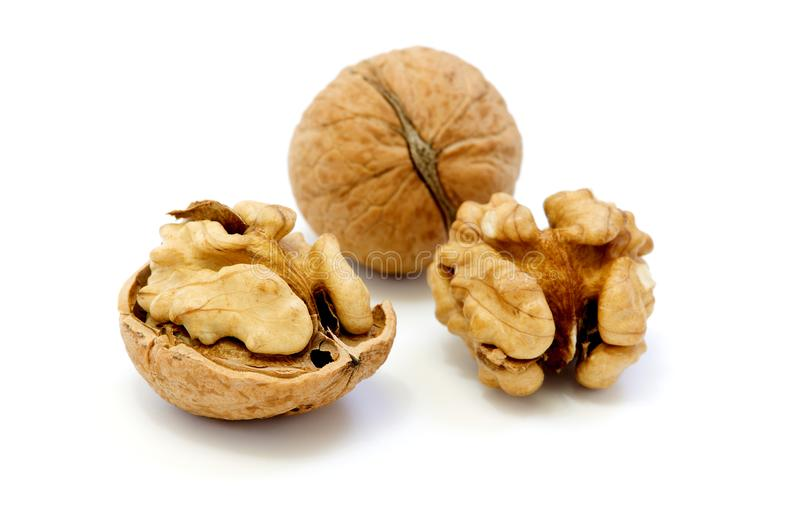 Walnuts, whole and opened stock image