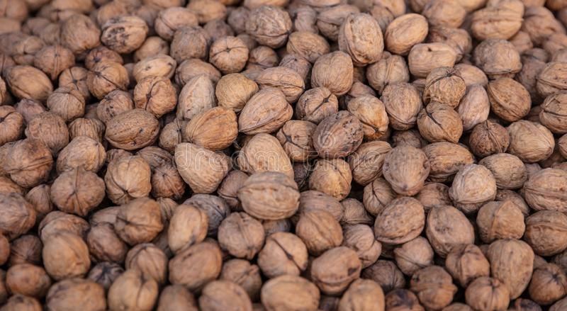 Walnuts whole with shell background, texture. Closeup view royalty free stock photos