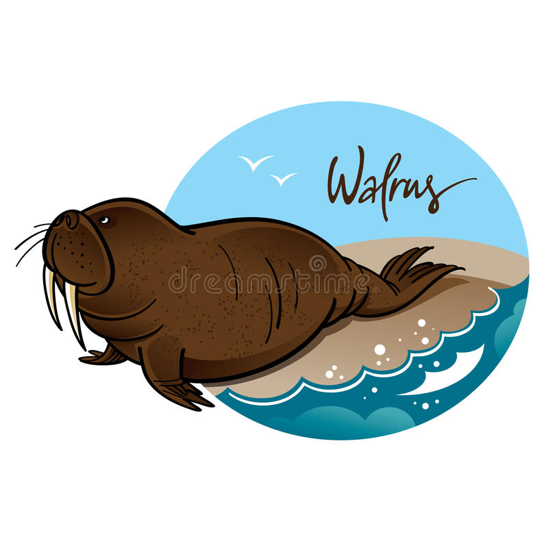 Download Walrus stock vector. Image of nature, clip, huge, illustration - 23730457