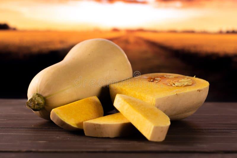 Waltham orange en forme de poire doux de courge de butternut avec le champ d'automne derrière photographie stock libre de droits