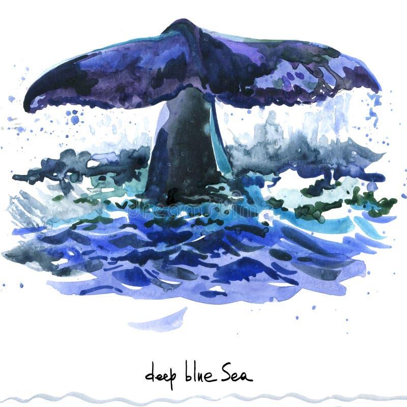 walvis De waterverfillustratie van de gebocheldewalvis stock illustratie