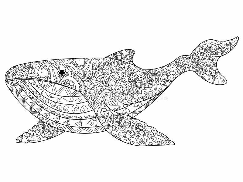 Walvis het kleuren vector voor volwassenen vector illustratie