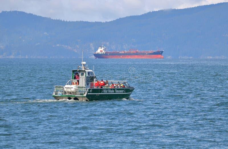 Walvis het Letten op Boot van Vancouver, Canada stock foto's