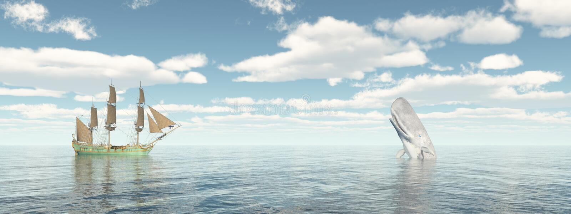 Walvisvaarder en potvis stock illustratie