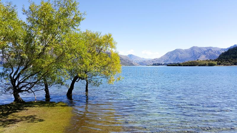Wanaka湖自然风景在秋天期间的在新西兰 免版税库存照片
