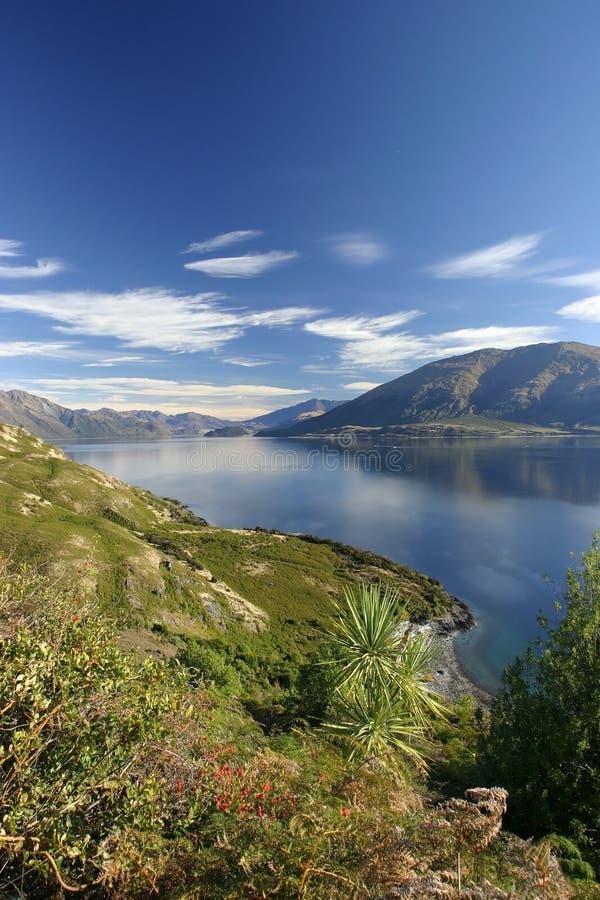 wanaka озера стоковая фотография