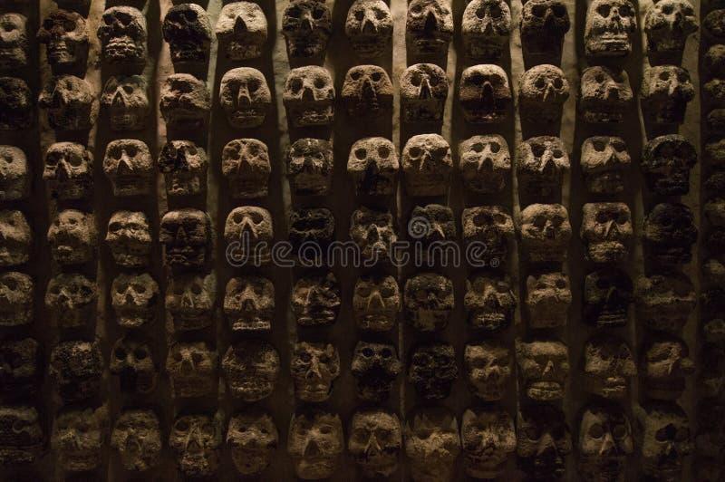 Wand von Schädeln lizenzfreie stockfotografie