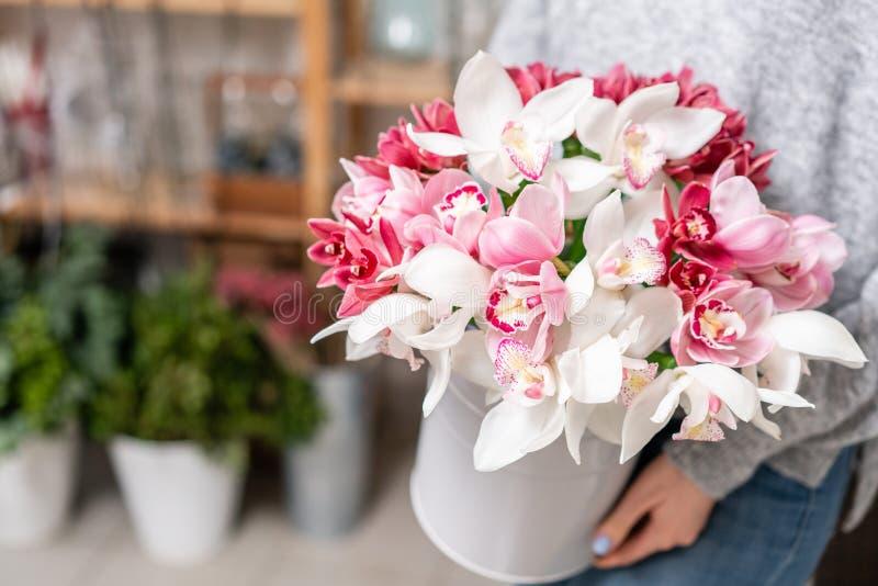 Wanda Orchid japonês em uns vasos do metal nas mãos das mulheres Grupo pálido - rosa branco o conceito de um florista em um flori imagens de stock