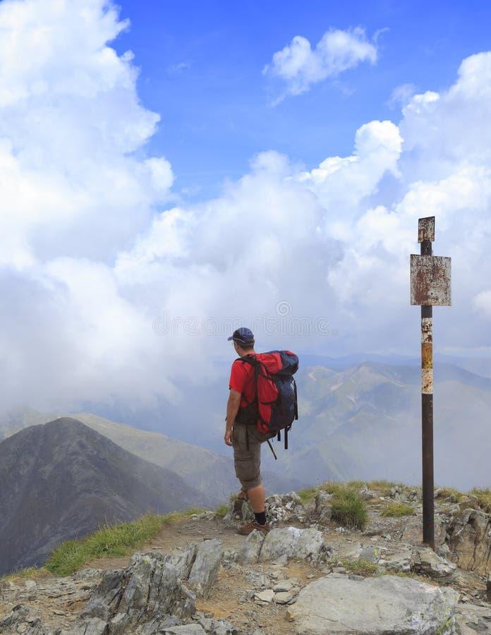 Wandelaar stock afbeelding