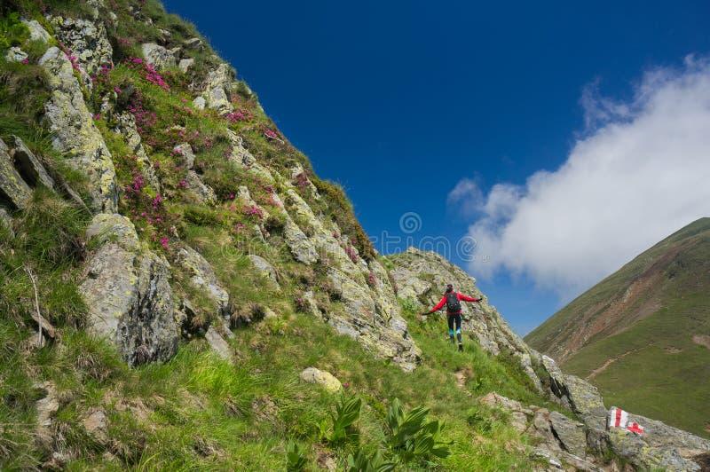 Wandelaar gelukkig in de bergen royalty-vrije stock afbeelding