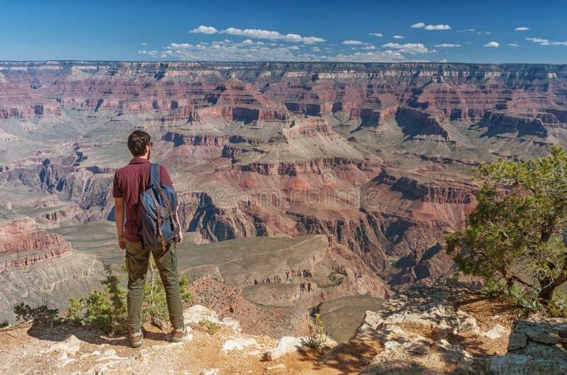 Wandelaar in Grand Canyon, de V.S. stock foto