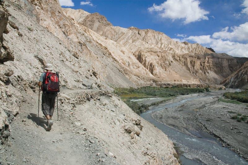 Wandelaar in Markha vallei, Ladakh, India royalty-vrije stock foto