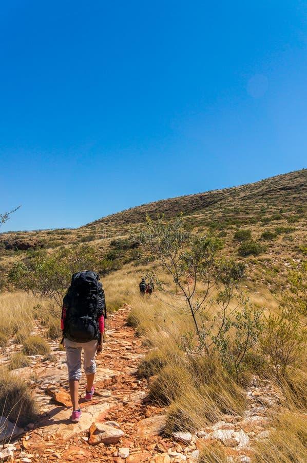 Wandelaar op de manier tot de bovenkant van de buitenkant Alice Springs van Onderstelsonder enkel in centraal Australië, het Nati royalty-vrije stock afbeelding