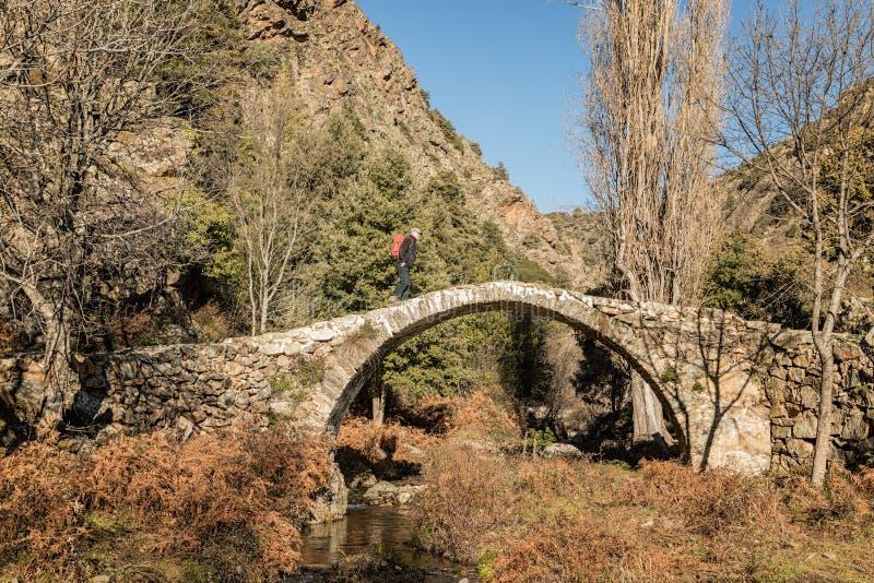 Wandelaar op Genoese-brug in de Tartagine-vallei in Corsica stock afbeeldingen