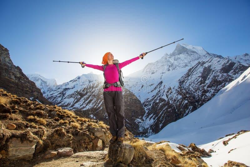 Wandelaar op trek in Himalayagebergte, Annapurna-vallei, Nepal royalty-vrije stock foto's