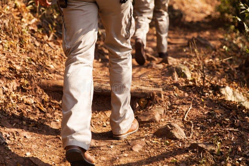 Wandelaars die bos lopen stock foto's