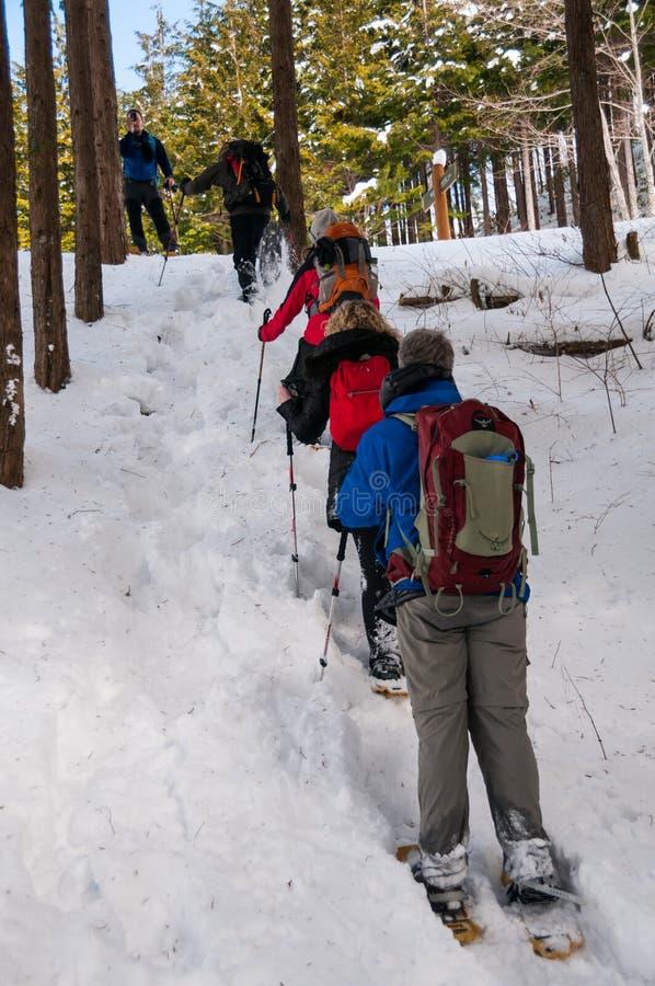 Wandelaars op de Jizo-Pas in de Prefectuur van Nagano, Japan stock afbeeldingen
