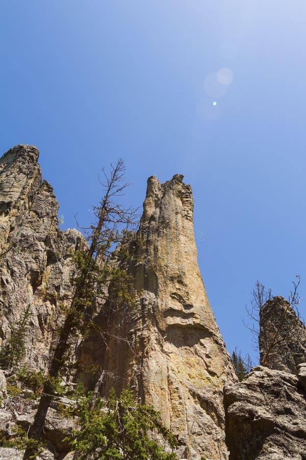 Wandelend in Custer State Park, Zuid-Dakota royalty-vrije stock afbeeldingen