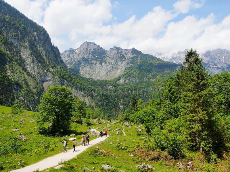 Wandelend in de alpen dichtbij Berchtesgaden in Obersee, Konigssee, Beieren, Duitsland stock fotografie