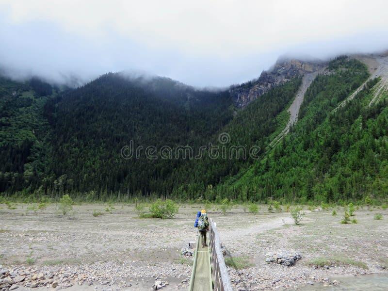 Wandelend de het meersleep van Berg rond Onderstel Robson Glacier, in Briti stock foto's