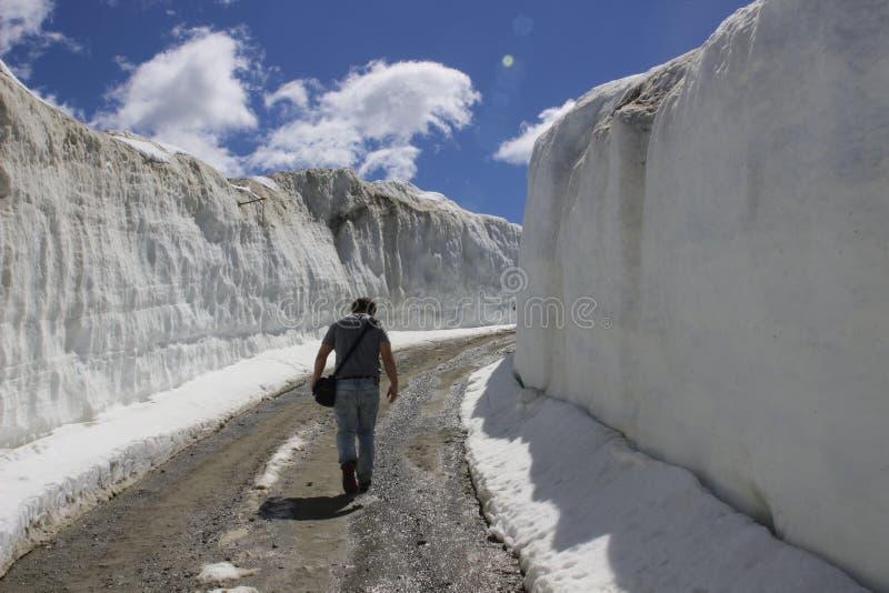 Wandelend in Fluiter, BC naast sneeuw afgedekte muren en bergen stock foto's