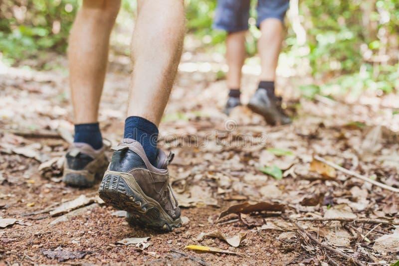 Wandelend in het bos, close-up van voeten van wandelaar stock afbeeldingen