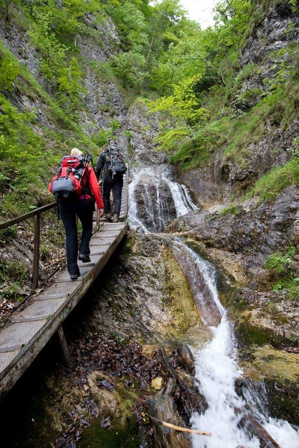 Wandelend in Mala Fatra, Slowakije stock fotografie