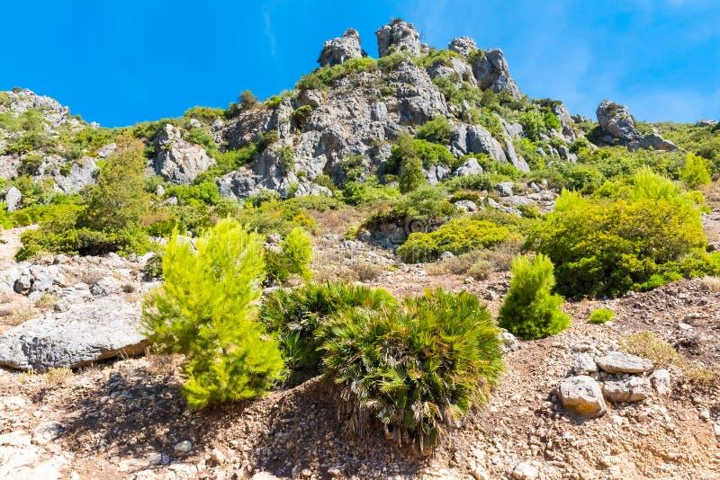 Wandelend in Rif Mountains van Marokko onder Chefchaouen-stad, Marokko, Afrika stock afbeeldingen