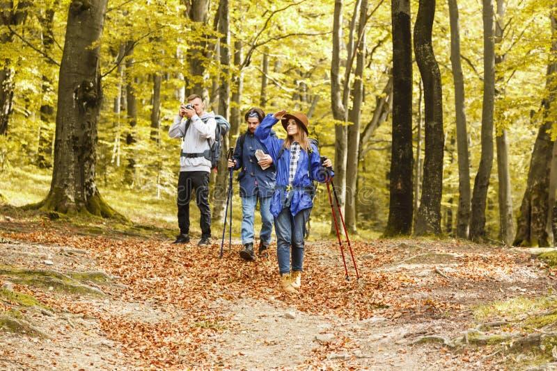 Wandelende Vrienden die op het Bos lopen royalty-vrije stock foto