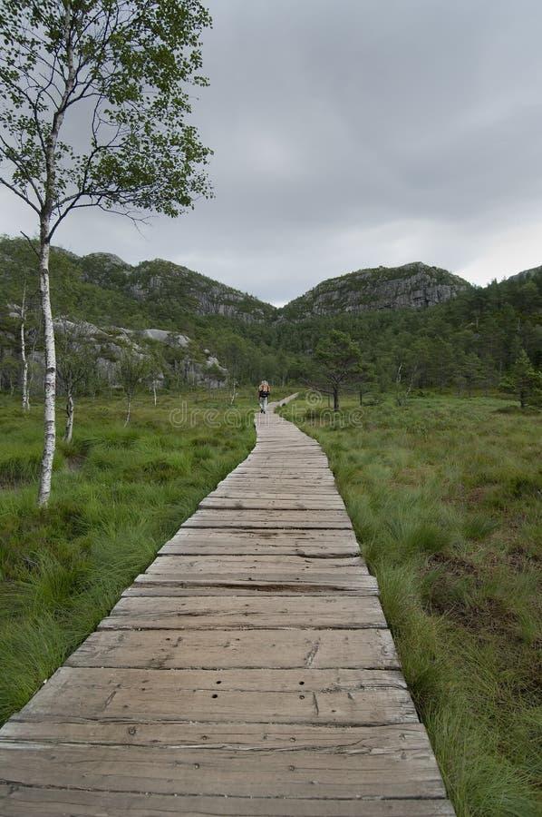 Download Wandeling stock foto. Afbeelding bestaande uit alpinisme - 10780014