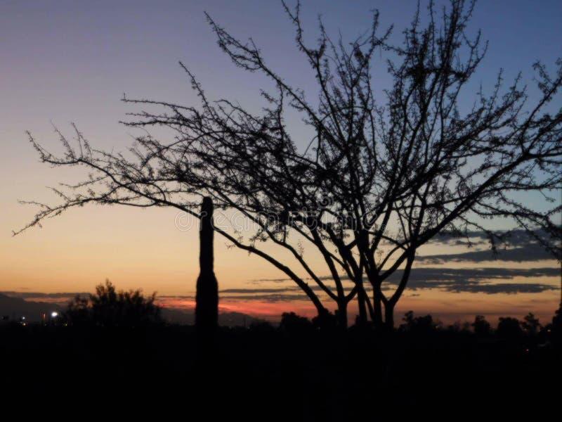 Wandeling in het weer van Arizona royalty-vrije stock foto's