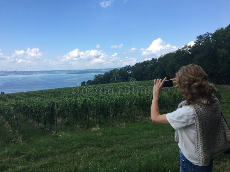 Wandeling in meersburg bij een vineyyard stock foto's