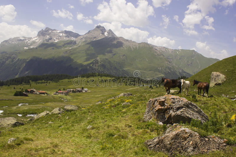 Wandeling op Alp Flix stock afbeelding