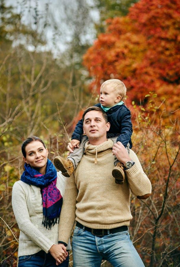 Wandelingfamilie in de herfstbos royalty-vrije stock foto