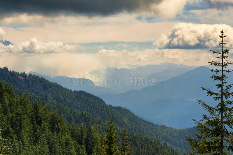 Wandelingsmeningen in de Cascadewaaier van Oregon ` s royalty-vrije stock foto's