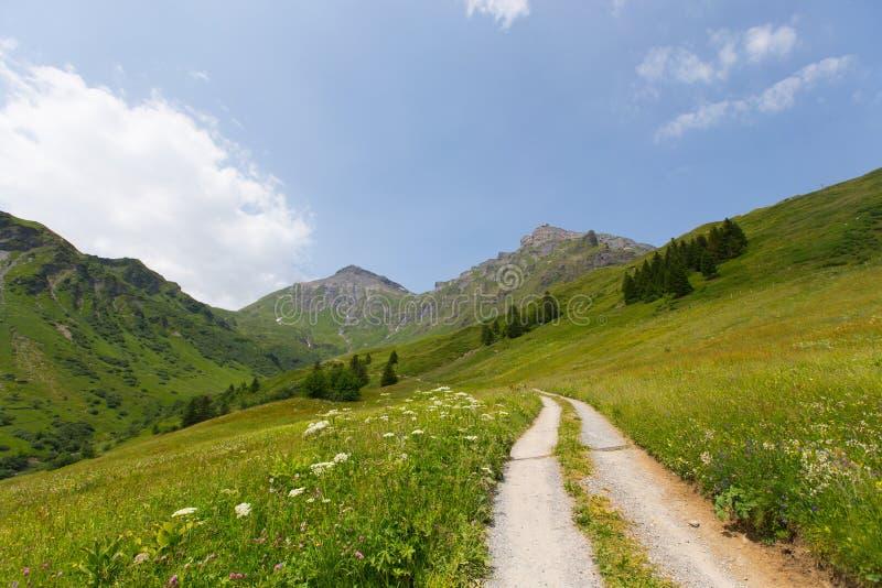 Wandelingssleep in Zwitserland stock foto's