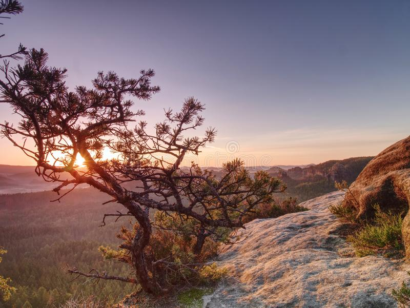 Wandelingsweg bergop in Bergen Gloedlens in camera van Zon royalty-vrije stock fotografie