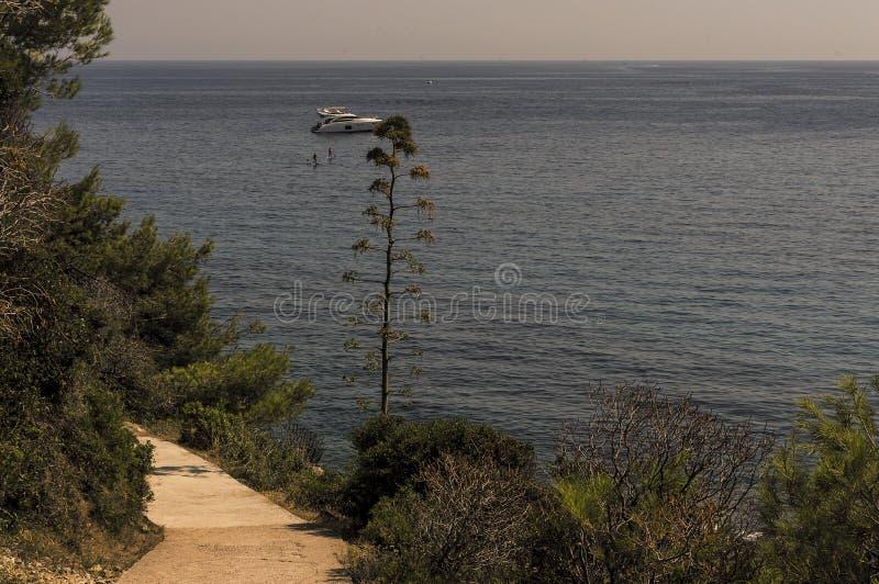 Wandelingsweg op de zeekust van GLB Martin in de zomer stock foto