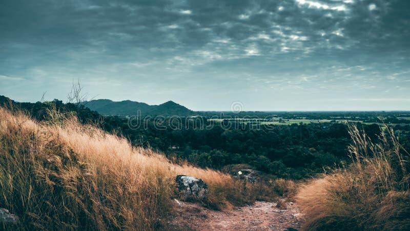 Wandelpad in de wildernis Sereniteit, achtergrond royalty-vrije stock afbeelding