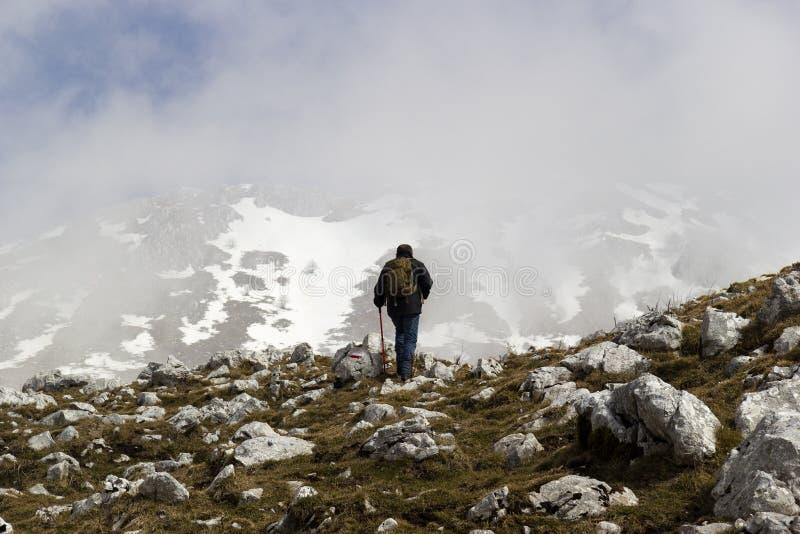 Wanderer auf Bergspitze stockfotografie