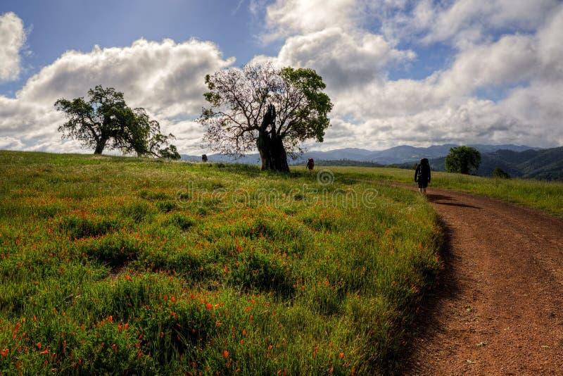 Wanderer auf Manzanita-Punkt-Straße, Henry Coe State Park lizenzfreies stockfoto