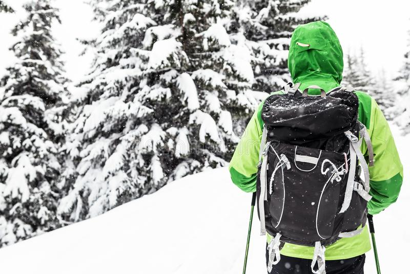 Wanderer auf Winterwanderung im weißen schneebedeckten Holz lizenzfreie stockfotografie