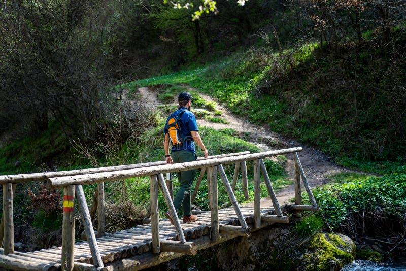 Wanderer, der draußen die Holzbrücke kreuzt stockfotos