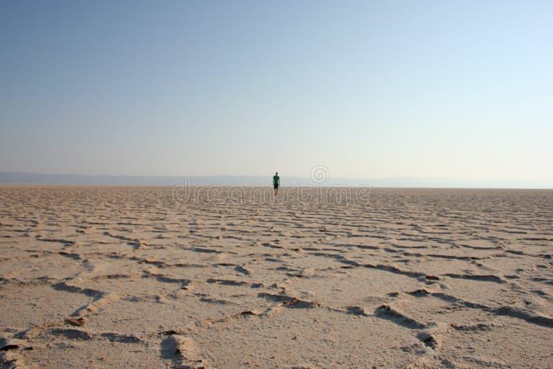 Wanderer in der Wüste (2) stockbilder