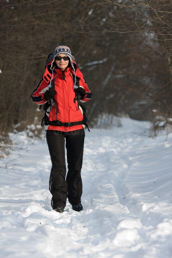 Wanderer Im Wald Lizenzfreies Stockbild